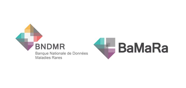logo bmdmr bamara 2020